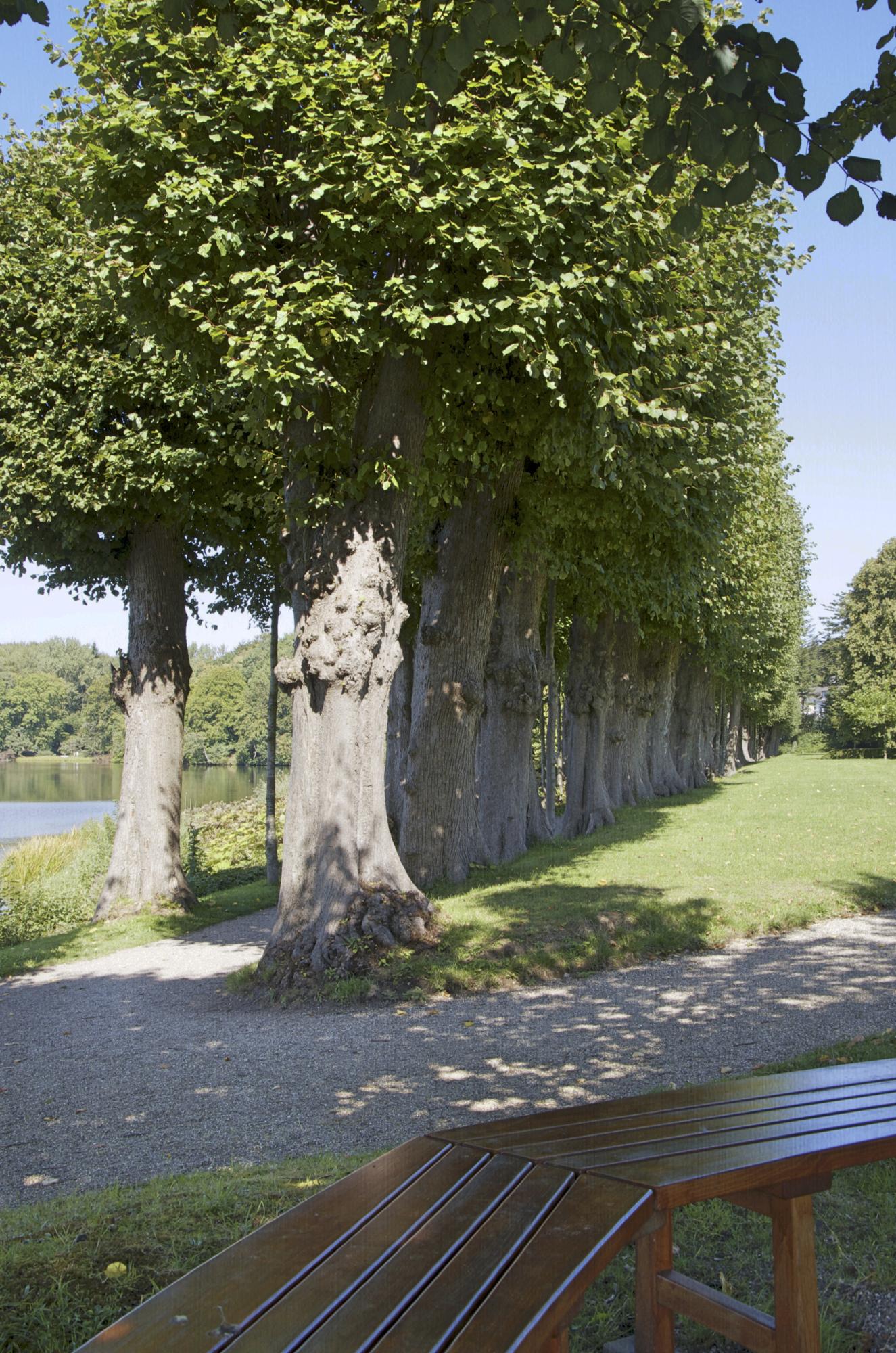 Park am Glücksburger Schloss